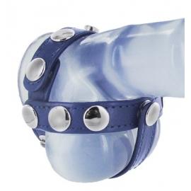 Coq bleu cuir et harnais de boule